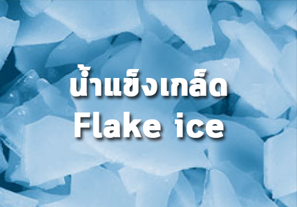 GRPD -I_Flake ice - น้ำแข็งเกล็ด - อินสไปร์ แมช 02 5439935